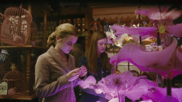 Harry Potter: aprenda a fazer Poção do Amor