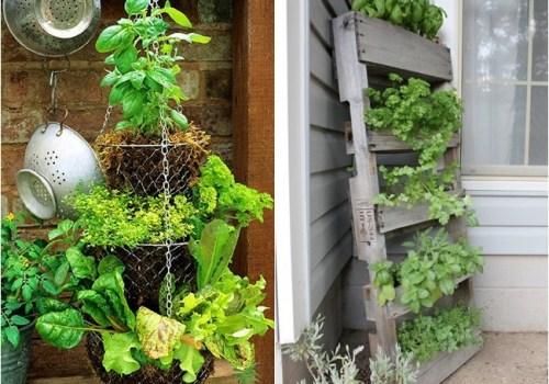 jardins hortas pequenos