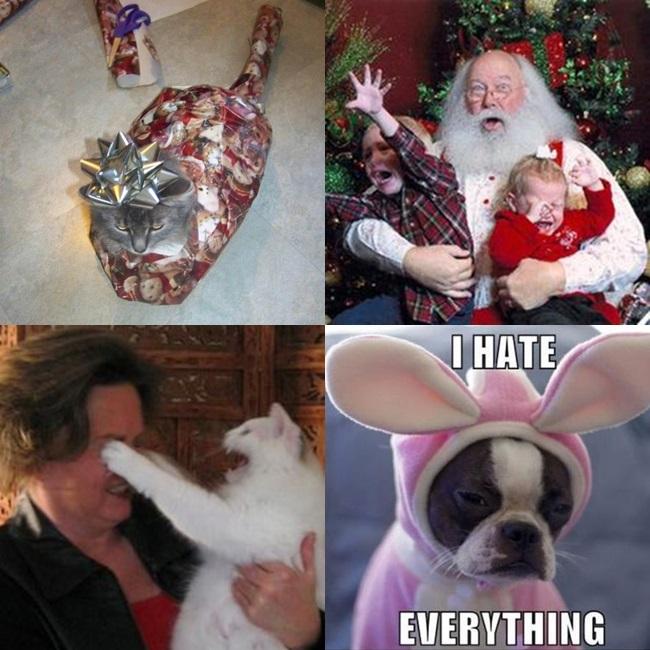 odeio natal