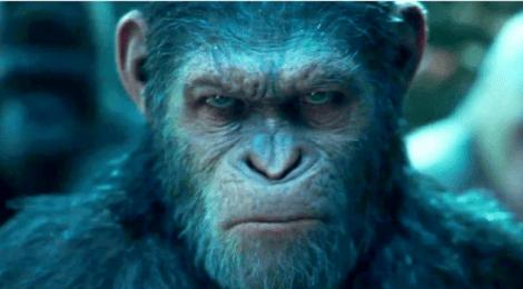 Crítica filme - Planeta dos macacos  - A guerra