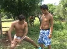porno brasileiros videos gays