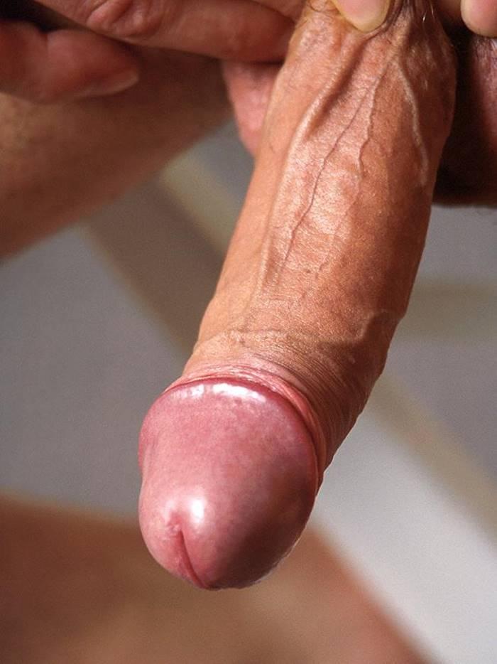 Fotos de Penis