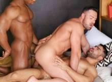 sexo entre machos
