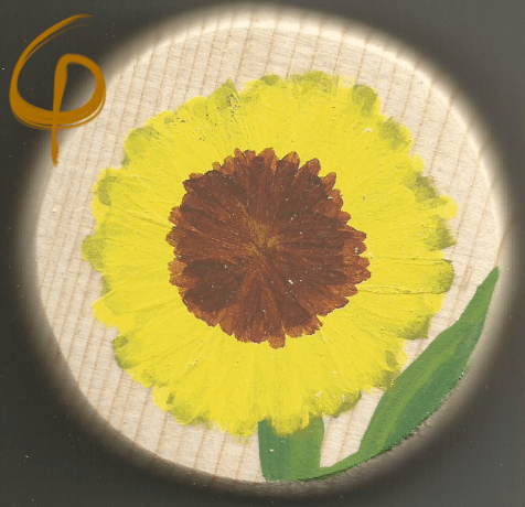 Scan of the sunflower.
