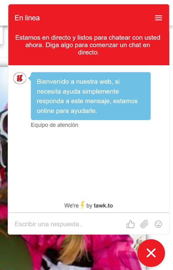 captura 1 ventana webchat