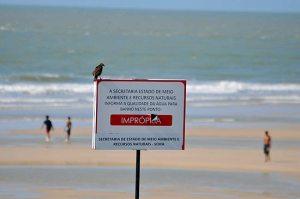 Uma placa do passado e do desgoverno: praias com águas que nem o passarinho não bebe