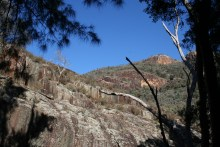 Wambelong Nature Trail, Warrumbungle Ranges (9)
