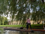 Cambridge UK Backs.2