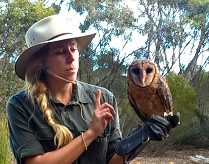Raptor Domain Birds of Prey Kangaroo Island 6 June 2016 (29)