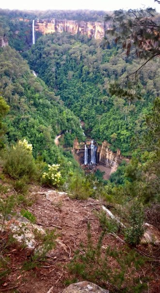 Fitzroy Falls 21 April 2017 Bushwalk with Grandchildren (13) (558x1024)