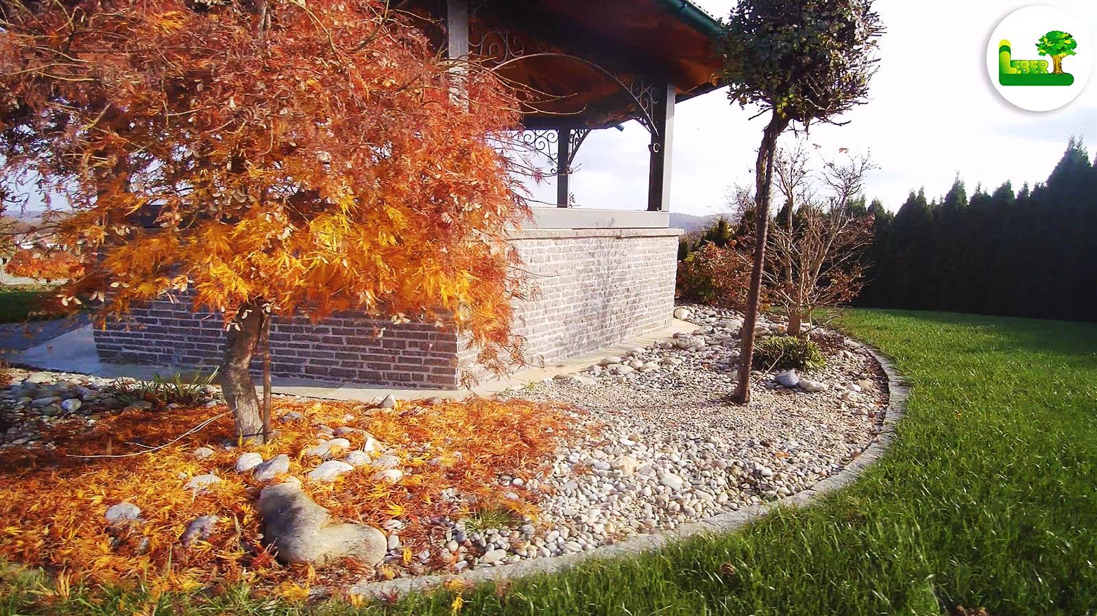 Titelbild: Die Schönheit des Herbstes.