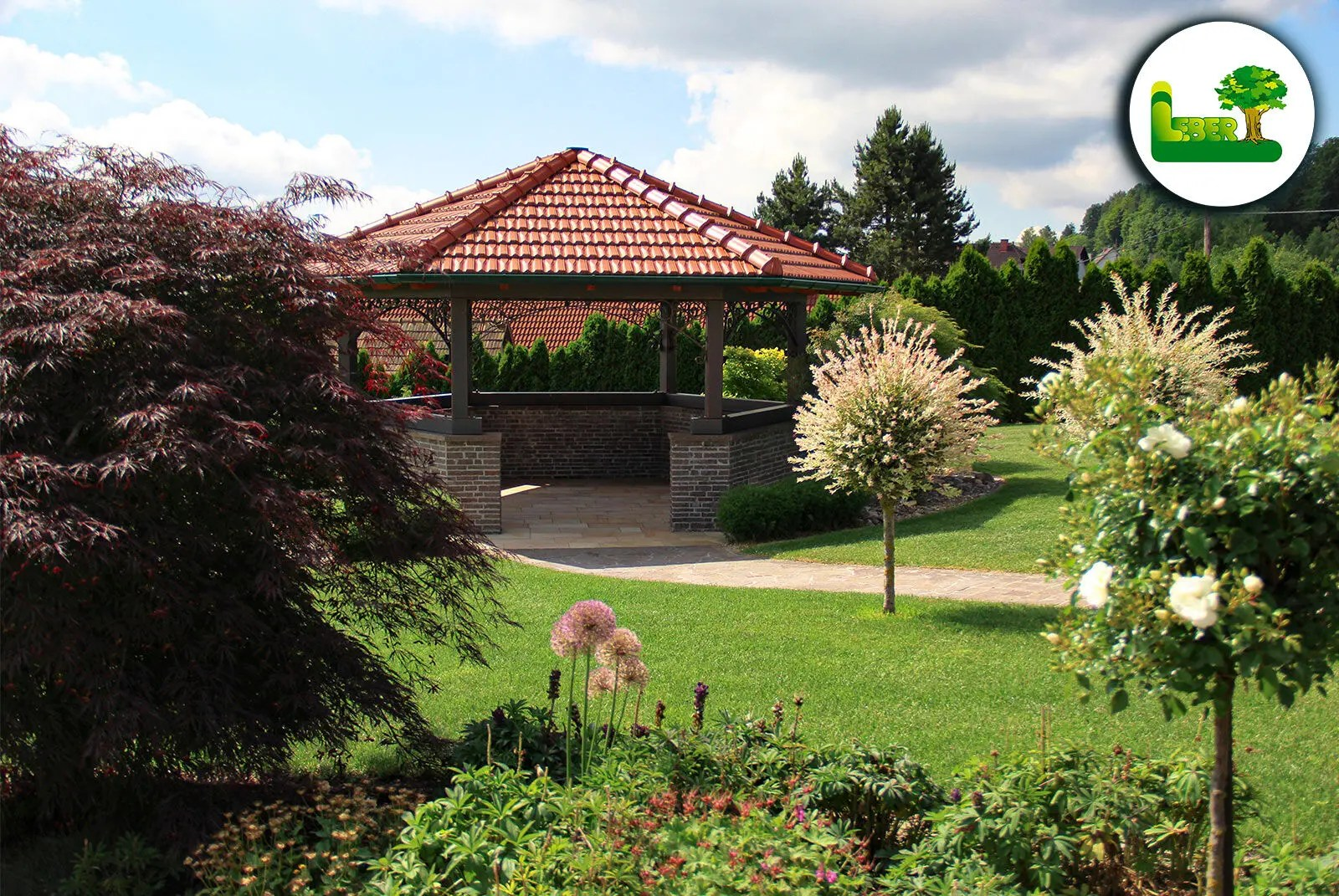 roter Fächerahorn im Garten mit Pavillon im Hintergrund.