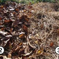Beet mit Mulch vorbereiten