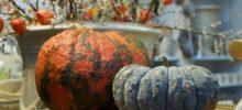 Kürbisfest!Ein fröhlich-bunter Eventkalender