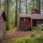 Mt Hood Cabin in The Woods