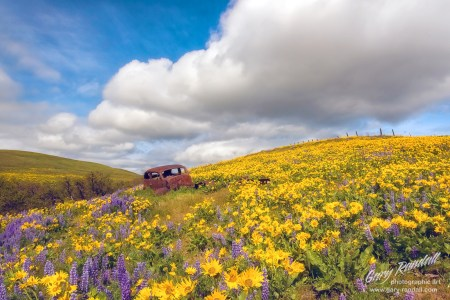 Dalles Mountain Ranch Washington