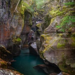 Avalanche Creek Glacier National Park