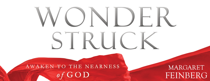 Wonderstruck: An Interview with Author Margaret Feinberg