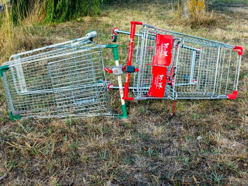 Mating trolleys from Woolworths and Coles Gary Lum