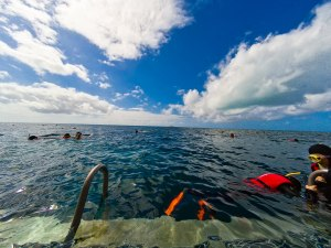 About to enter the water. Snorkelling Sunlover Reef Pontoon, Great Barrier Reef