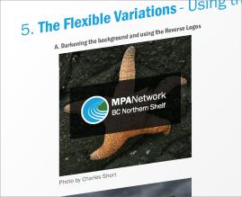 MPA Network | Flexible Logo Treatment