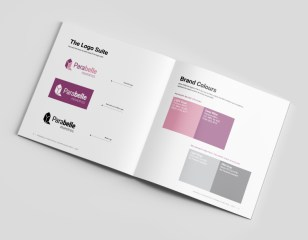 Brand Guidelines – Logo versions