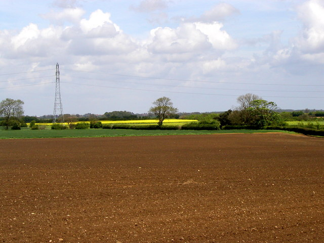 The flatness of Holderness