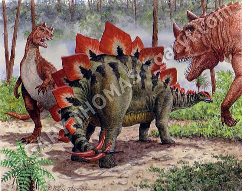 Steg_Ceratosaurus