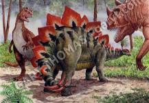 Stegosaurus & Ceratosaurus