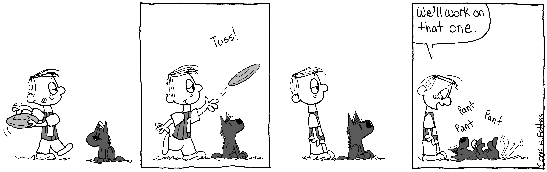 Fetch, Boy!