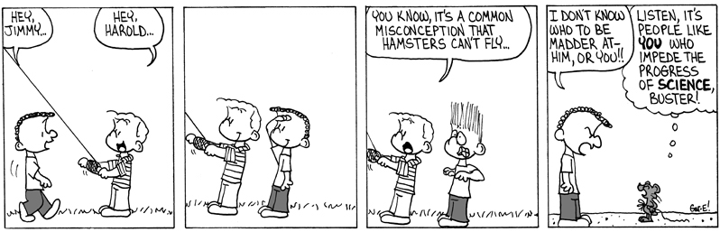 Hamster Flying