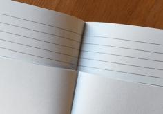 Papio papers