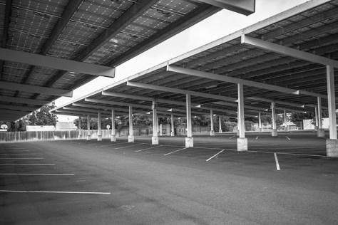 Petaluma High School parking lot