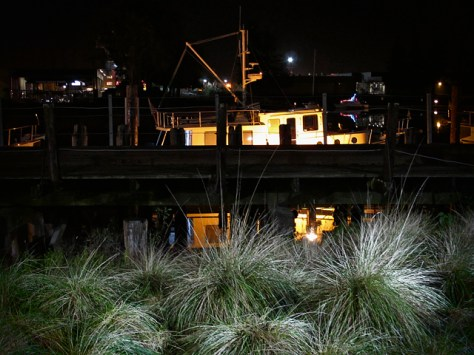 Grass and boat on the river at night