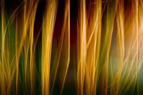 Abstract Orton movement effect image
