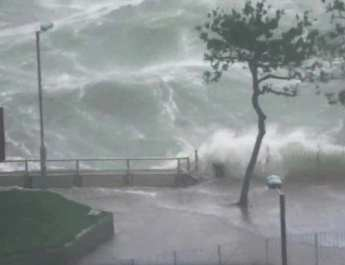 mangkhut-crash-beside-during-typhoon-promenade-ferry_76c6ecaa-b9b9-11e8-ab60-f008577e130d