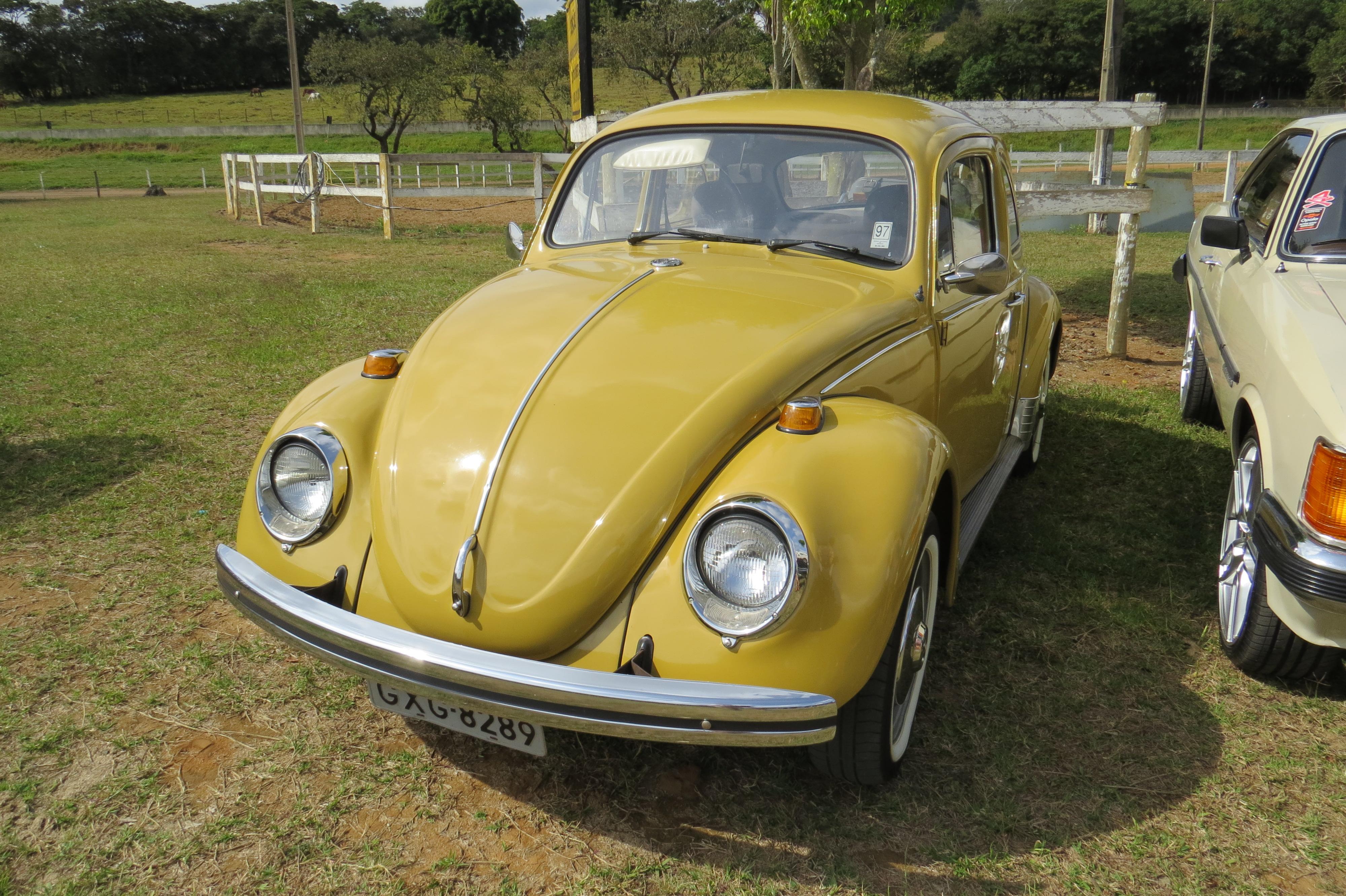 IMG 4936 - 3º Grande Encontro dos Carros Antigos do Sul de Minas