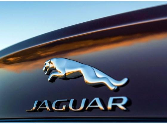 q35 - Os carros da Jaguar