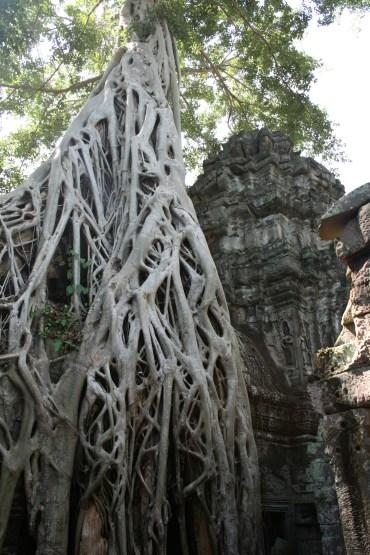 Ankor Wat 1
