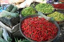 Vietnam spices