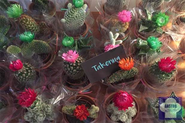 Takering catering saludable mexicano