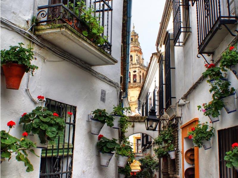 Lugares que ver en Córdoba Calleja de las flores