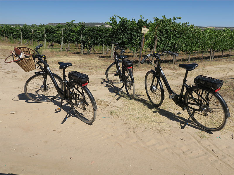 Enoturismo en bicicleta Finca Villacreces