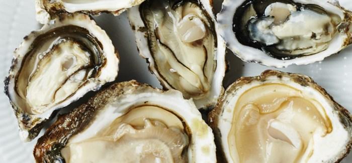GUIDE: 5 lækre østers du skal kende