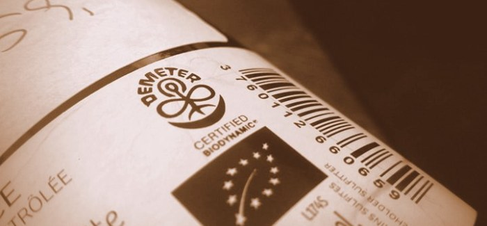 VIN UDEN PIS: Biodynamisk vin for dummies