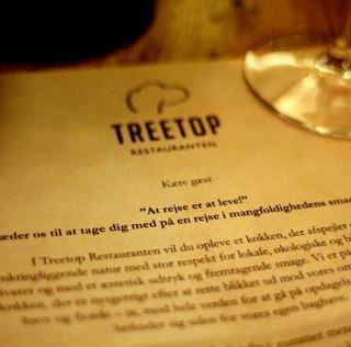Treetop og Munkebjerg i Vejle – En omvej værd!