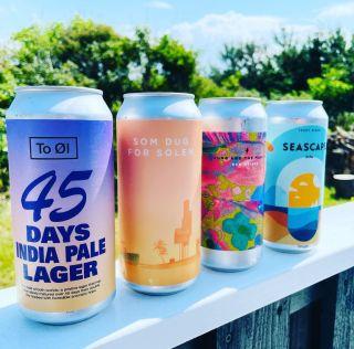 Disse øl skal du drikke til sommer