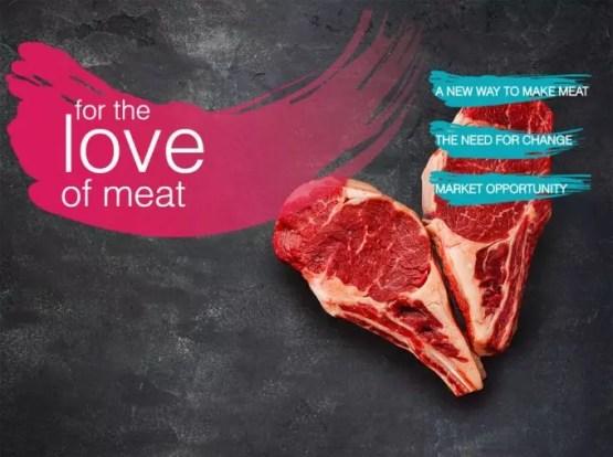Alternativas a la carne tradicional