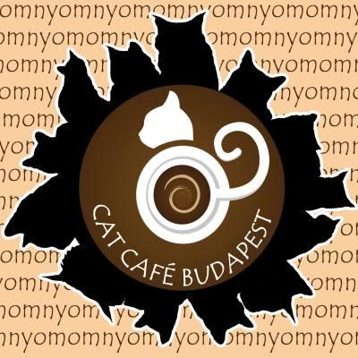 Cat Café Budapest - a legmacskásabb hely