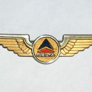 Delta Airlines Jr. Pilot Wings – Pinback